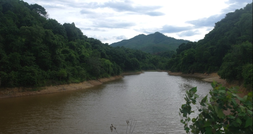 Community forest management in Son Linh commune, Huong Son district, Ha Tinh province